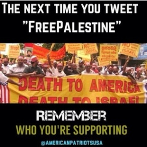 Americans for Palestine REALLY!